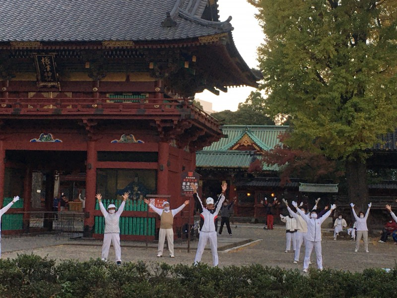 朝の根津神社